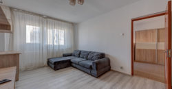 Apartament 2 camere, mobilat/utilat – Hanul Drumetului